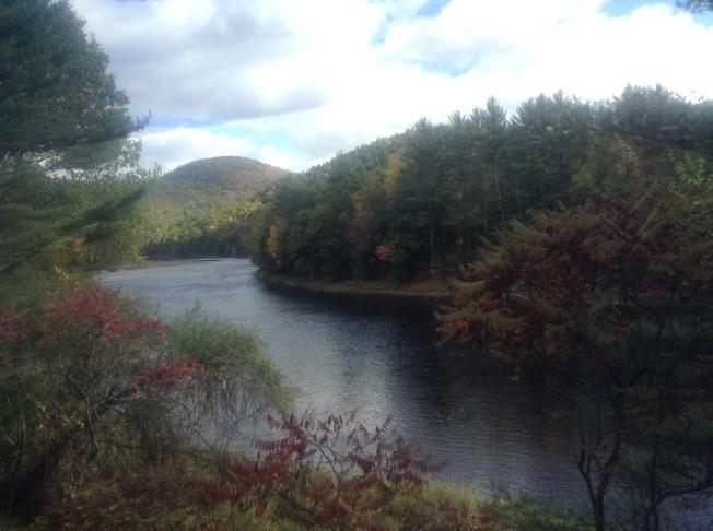 New England 315