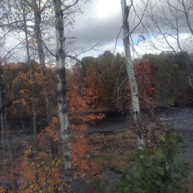 New England 354